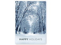 Snowy Winter Path Holiday Greeting Card